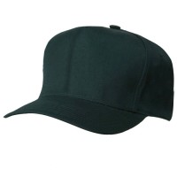 Ball Cap - Pro Style Twill Brushed Cap | Free Shipping | e4Hats.com