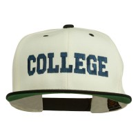 Embroidered Cap - College Embroidered Snapback