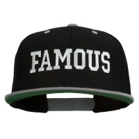 Embroidered Cap - Famous Embroidered Snapback