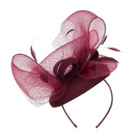 Dressy - Horsehair Net Crown Fascinator