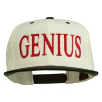 Embroidered Cap - Genius Embroidered 2 Toned Snapback Cap