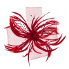 Dressy - Feathers , Netting Fascinator