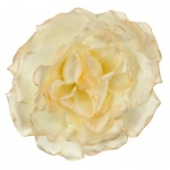 Large Open Rose Silk Two Tone Clip and Pin - Cream
