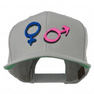 Gender Signs Embroidered Cap - Silver