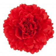 Multi Petal Flower with Pin and Clip - Red