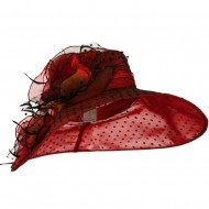 Polka Dot Designed Flower Detailed Organza Hat - Red