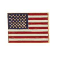 Pin , Badge - USA Flag Cloisonne Military Pins | Free Shipping | e4Hats.com