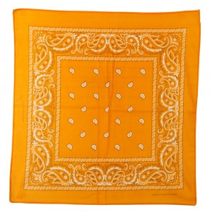 Wrap - Orange Paisley Series Bandana | Coupon Free | e4Hats.com