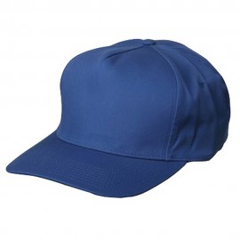 Pro Style(05) Twill Caps-Royal