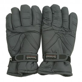 Water Repellent Polar Ski Glove