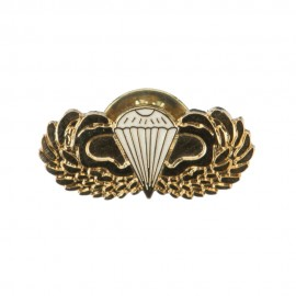US Army Airborne Cloisonne Military Pins