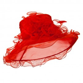 Feather and Lace Accent Organza Hat - Red