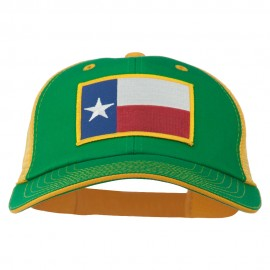 Big Mesh State Texas Patch Cap