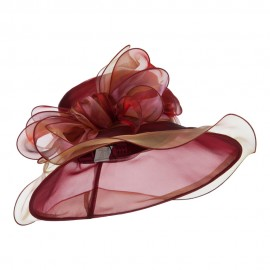 Two Tone Double Glass Organza Hat - Burgundy
