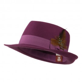 Diamond Wool Feather Fedora
