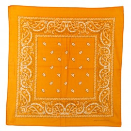 Paisley Series Bandana - Orange