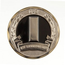 U.S. Army Rank Coin (2)